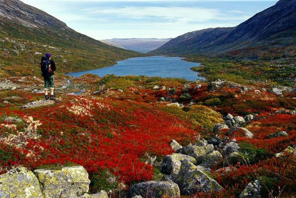 Fiordos de Noruega. Foto: Anders Gjengedal/Innovation Norway. (clickear en la imagen para agrandar)